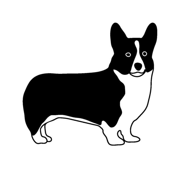 ビックリ犬