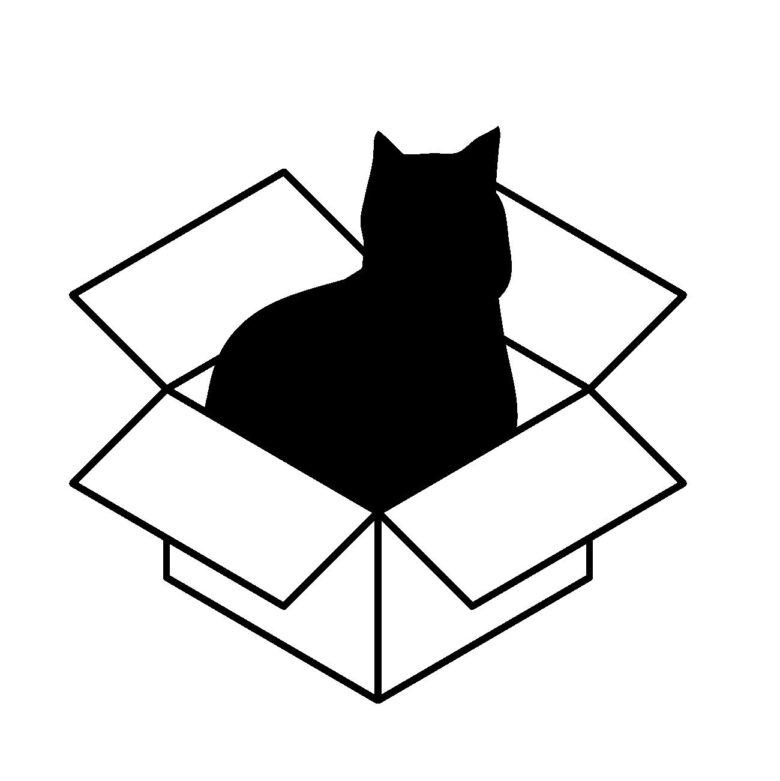 箱入り猫ムスメ